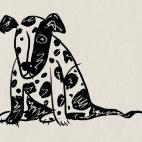 Slightly sad dog