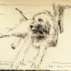 Bar Bacchus dog Antibes